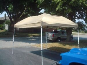 10 X 10 PARTY TENT