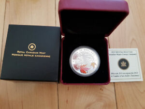 2013 $20 Maple Canopy: Autumn - Pure Silver Coin