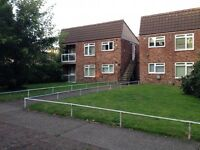 1 bed council flat Norwich to derby