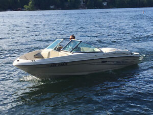 Family Sea Ray 18ft Sport Boat in great condition (2004)