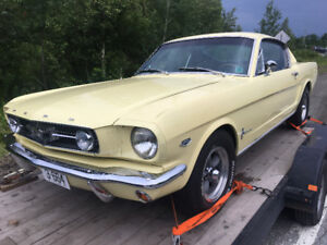 Looking for 1964-1970 Mustang Fastback and Convertible