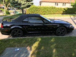 2000 MUSTANG GT CONVERTIBLE TRIPLE BLACK 5 SPEED 4.6L V8