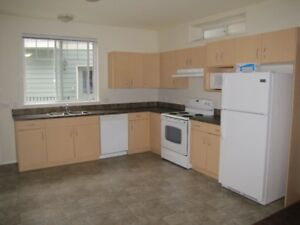 2 BR Bright and spacious suite for rent