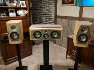 Infinity Interlude10's & 36c loudspeakers. w/stands