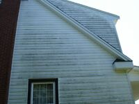 PROFESSIONAL HOUSE AND DECK WASHING