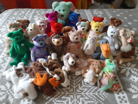 Ty beanie baby and bear bundle