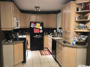 Maple cabinets and countertop