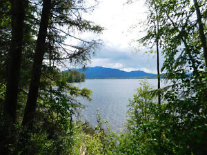 Affordable Privacy and Serenity on Canim Lake, 1.7 Acre Lot