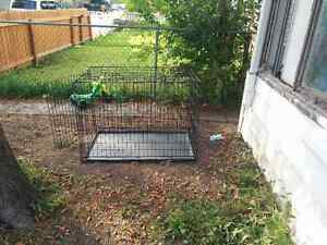 Black wire kennel carrier