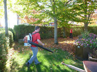 Fall leaf pick up service offering garden/property clean up