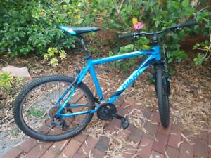 giant boulder mountain bike