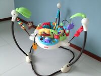 Fisher-Price - Luv U Zoo Jumperoo used for 2 months