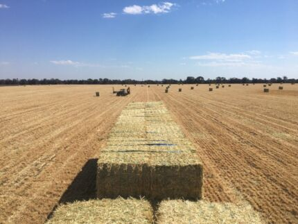 Hay for Sale!!