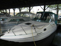 Excellent boat and motor at an excellent price