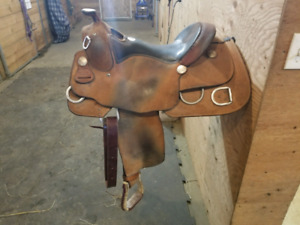 16 inch Billy Cook Trainer