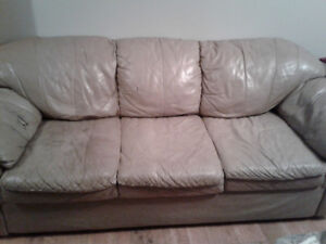 2 and 3 seats couches