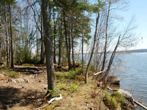 Bear Island Waterfront for Rent - Put your RV/ Trailer on it