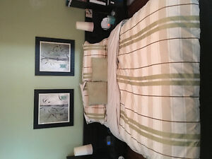 Artwork, bedside lamps, duvet cover, shams and throw pillows