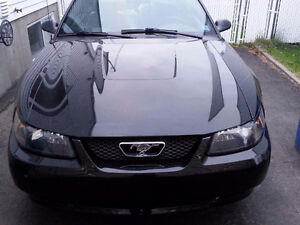 2004 Ford Mustang 40e anniversaires