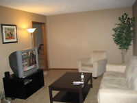 Large Bedrooms for Rent. Young Professionals & Mature Students.