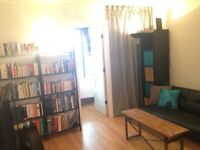 2 bedrooms for rent, 5 min from mcgill JUNE-AUGUST
