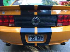 Mustang GT 2007