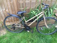 """Ladies 17"""" salcano hybrid bicycle. Inc new lights and mudguards. Free delivery. D lock available"""