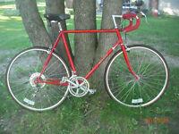 Miyata 710 Semi-Pro LightWeight Road Bike (1981)