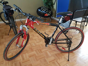 Velo de Montage/Mountain Bike Great Condition Small Child/Teen T