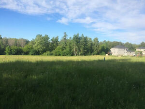 Professional lawn cutting. Small lots to several acres Cambridge Kitchener Area image 7