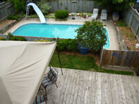 Great Mayfair Family Home with inground Pool!