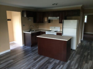 Newly Renovated 3 Bedroom House (East)