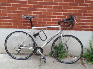 Fuji Ace Bicycle