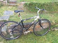 Raleigh hybrid bike sport 100 great condition