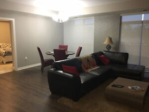Modern 1 Bedroom - Lease Takeover London Ontario image 1