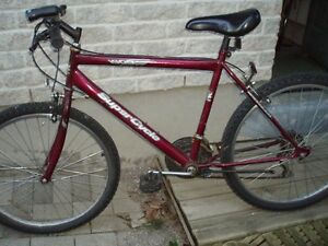 SUPER CYCLE 15 SPEED 26 INCH WHEELS
