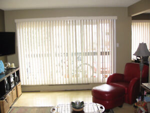 1 Bedroom Condo for Rent Renovated Southwest Location