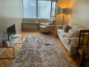 Furnished Sublet Downtown Apartment (starting Aug 3)