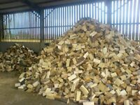 Logs for sale