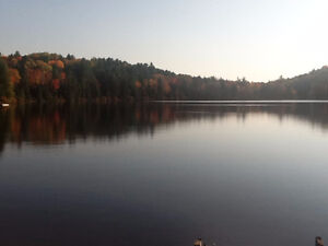 Waterfront - 2 acre lot, on a lake, in the woods!