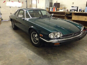 Jaguar XJS in Amazing Shape!  Ready for cruising. Trade for?