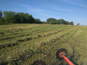 2016 Hay For Sale! $2.50/Bale