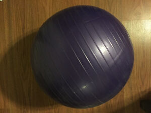 Small exercise ball with weight loss workout  manual