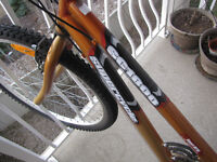 Supercycle for sale
