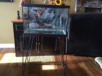 20 gallon fish tank and stand with lid