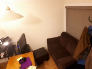 1 Bedroom Apartment Sublet January 1st