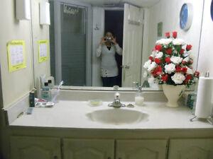 Room for Rent (Danforth & Seminole - Walkout Basement)