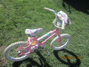 PRINCESS GRILL BIKE