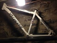 Specialized stumpjumper frame