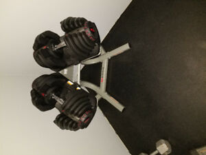 Bowflex Select Teck Dumbells and Stand.